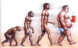 obesidad_evolution