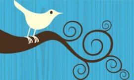 twitter-bird-logo-0011